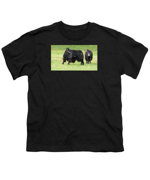 Yaketty Yak Youth T-Shirt by Liz Leyden