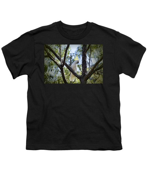Sulphur Crested Cockatoo Youth T-Shirt by Douglas Barnard