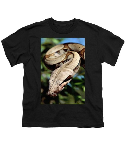Boa Constrictor Boa Constrictor Youth T-Shirt by Claus Meyer