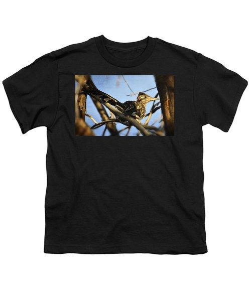 Roadrunner Up A Tree Youth T-Shirt by Saija  Lehtonen
