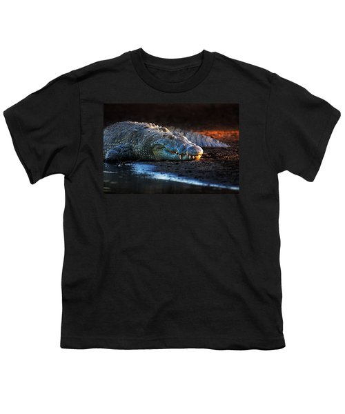 Nile Crocodile On Riverbank-1 Youth T-Shirt by Johan Swanepoel