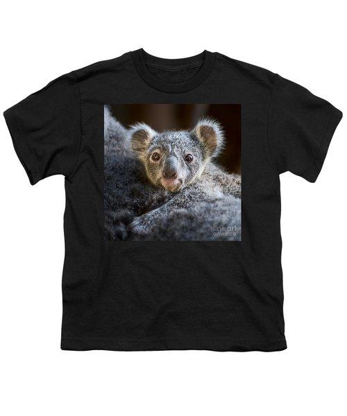 Up Close Koala Joey Youth T-Shirt by Jamie Pham