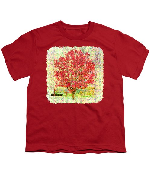 Autumn Musings 2 Youth T-Shirt by John M Bailey