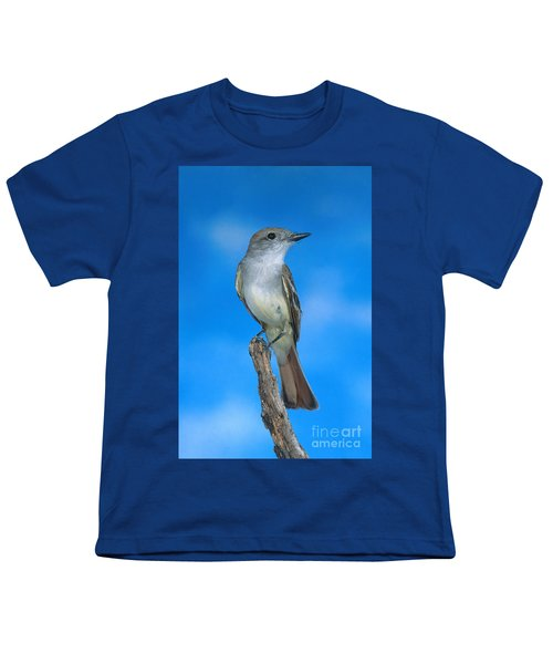 Ash-throated Flycatcher Youth T-Shirt by Anthony Mercieca