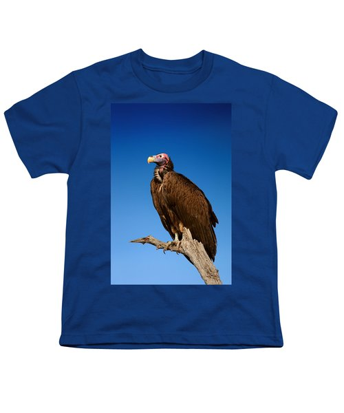 Lappetfaced Vulture Against Blue Sky Youth T-Shirt by Johan Swanepoel