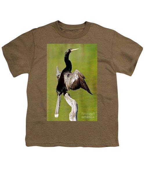 Anhinga Anhinga Anhinga Drying Plumage Youth T-Shirt by Millard H. Sharp