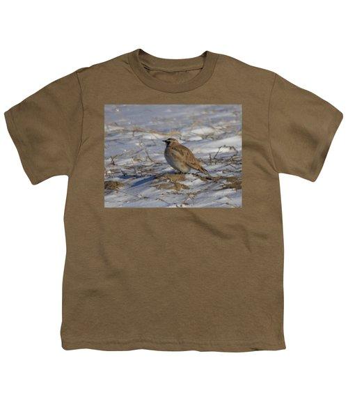 Winter Bird Youth T-Shirt by Jeff Swan