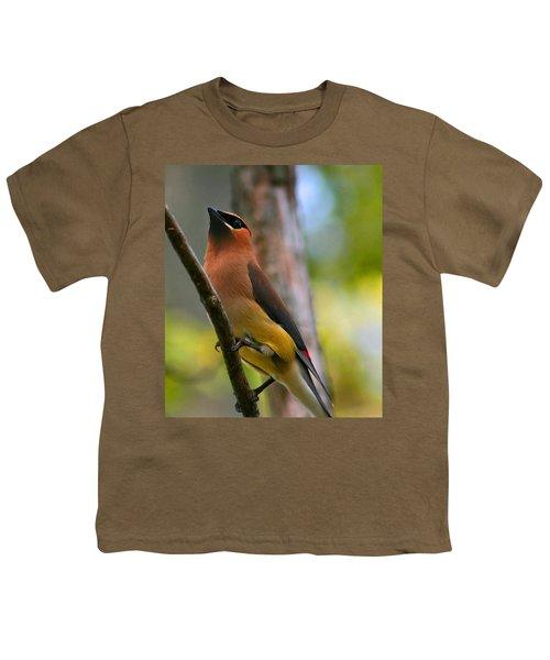 Cedar Wax Wing Youth T-Shirt by Roger Becker