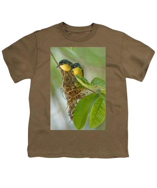 Close-up Of Two Common Tody-flycatchers Youth T-Shirt by Panoramic Images
