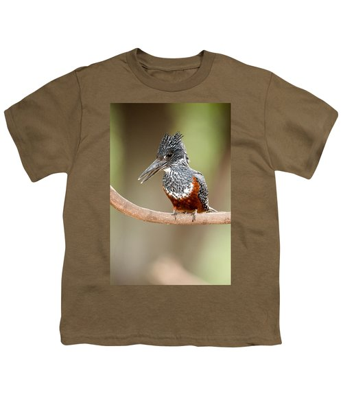 Giant Kingfisher Megaceryle Maxima Youth T-Shirt by Panoramic Images
