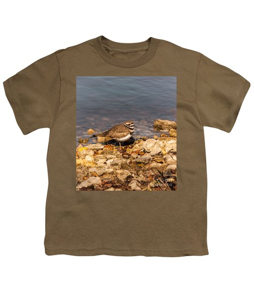 Kildeer On The Rocks Youth T-Shirt by Robert Frederick