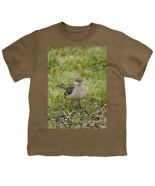 Northern Mockingbird Youth T-Shirt by Heather Applegate