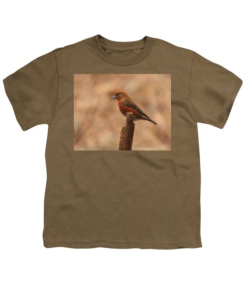 Red Crossbill Youth T-Shirt by Charles Owens
