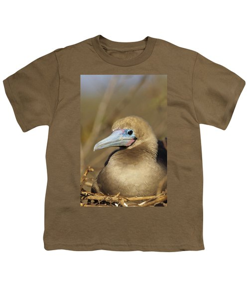 Red-footed Booby Incubating Eggs Youth T-Shirt by Tui De Roy