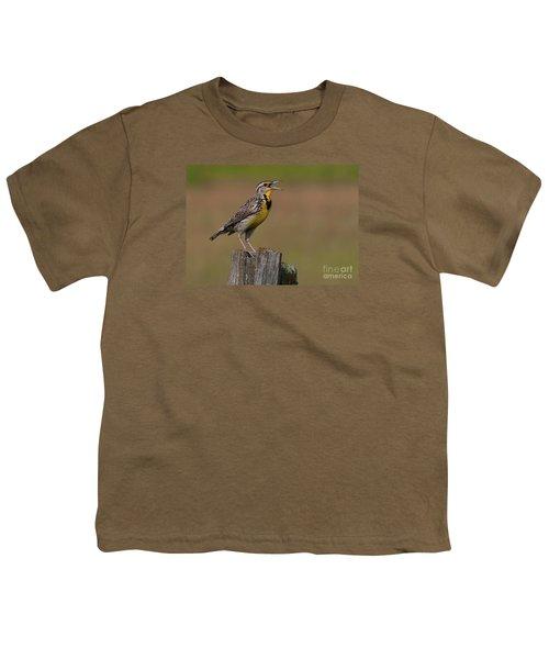 Western Meadowlark.. Youth T-Shirt by Nina Stavlund