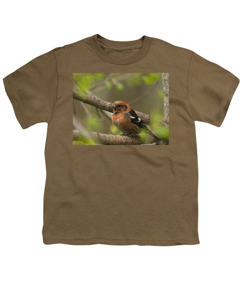 White-winged Crossbill Youth T-Shirt by James Peterson