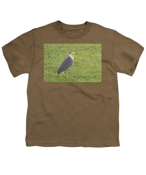 Masked Lapwing Youth T-Shirt by Douglas Barnard