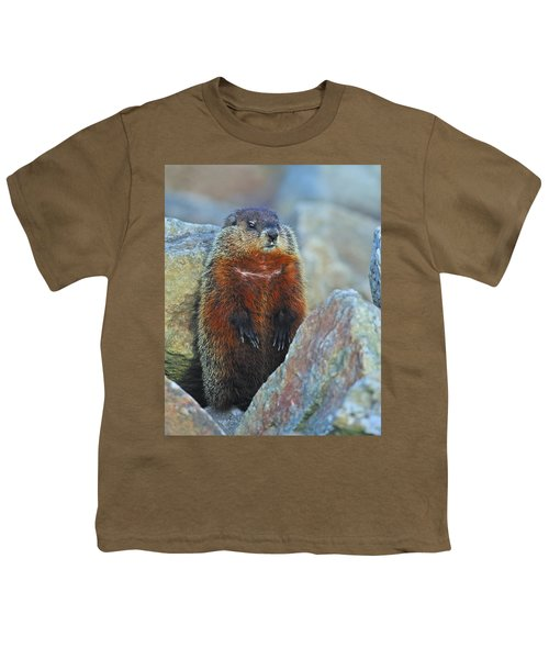 Woodchuck Youth T-Shirt by Tony Beck