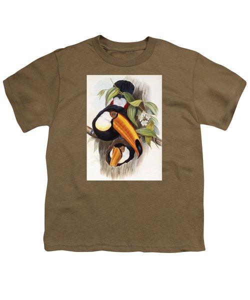 Toucan Youth T-Shirt by John Gould