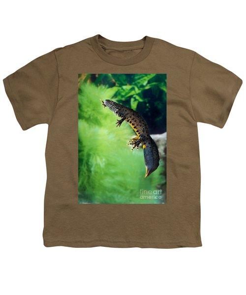 Alpine Newt Triturus Alpestris Youth T-Shirt by Gerard Lacz