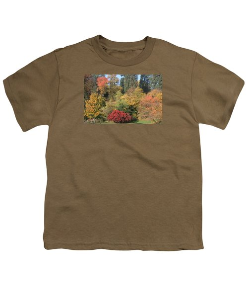 Youth T-Shirt featuring the photograph Autumn In Baden Baden by Travel Pics