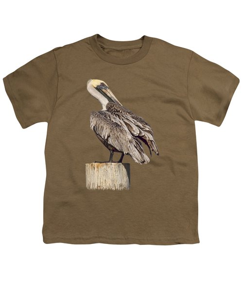 Brown Pelican - Preening - Transparent Youth T-Shirt by Nikolyn McDonald