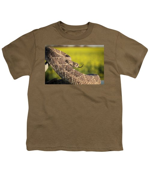 Diamondback And Canola Field Youth T-Shirt by Chris Harris