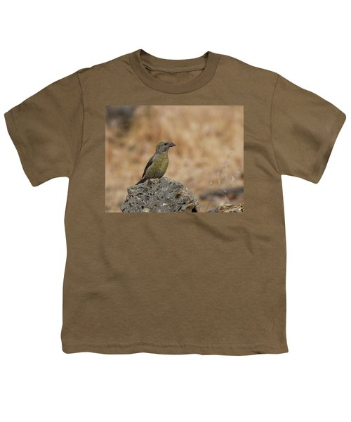 Female Red Crossbill Youth T-Shirt by Doug Lloyd