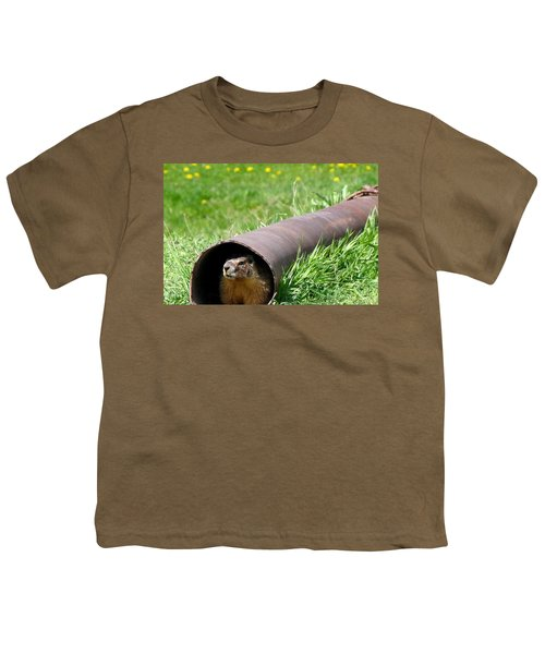 Groundhog In A Pipe Youth T-Shirt by Will Borden