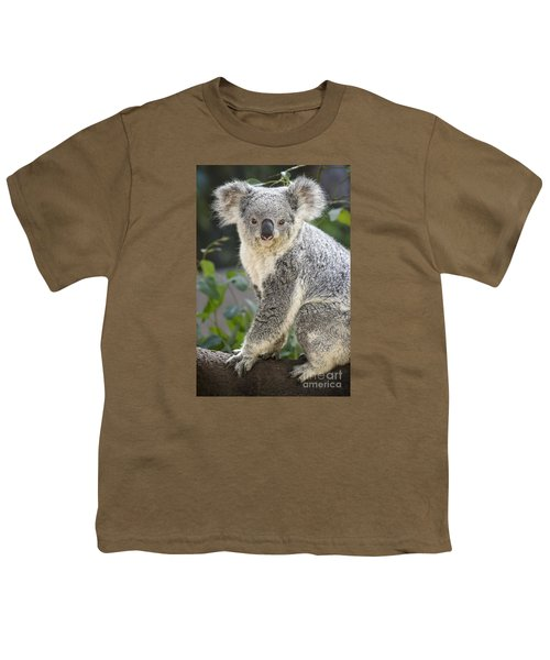 Koala Female Portrait Youth T-Shirt by Jamie Pham