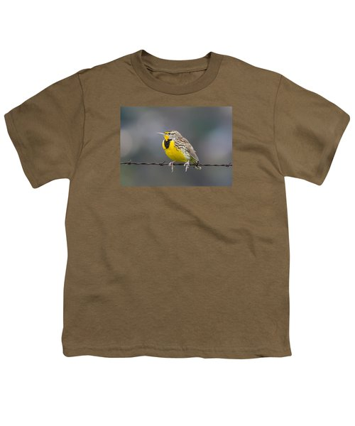 Meadowlark On Barbed Wire Youth T-Shirt by Marc Crumpler