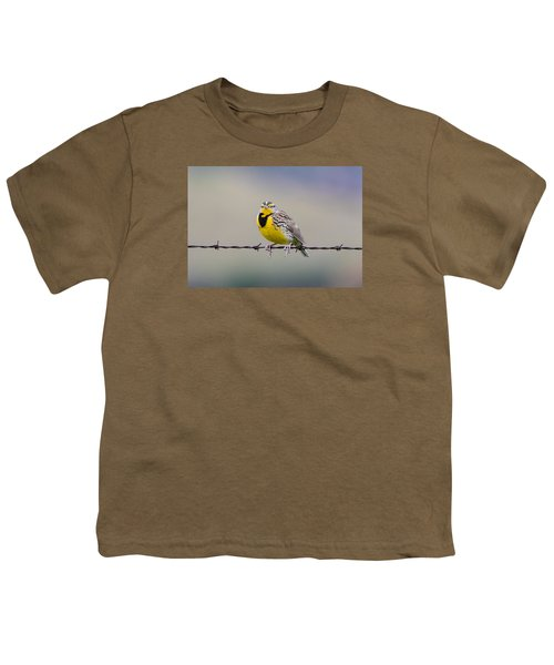 Meadowlark Stare Youth T-Shirt by Marc Crumpler