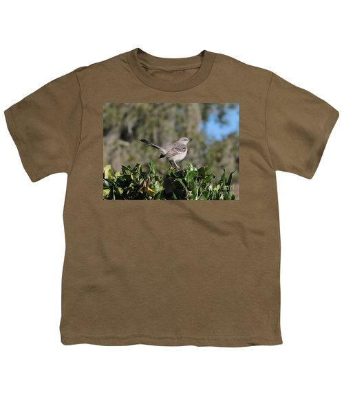 Northern Mockingbird Youth T-Shirt by Carol Groenen