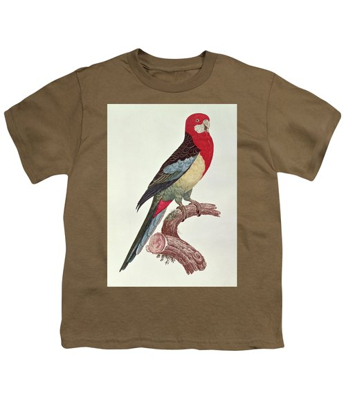 Omnicolored Parakeet Youth T-Shirt by Jacques Barraband