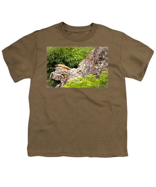 Rock Chuck Youth T-Shirt by Lana Trussell