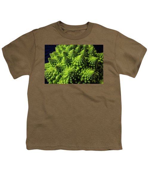 Romanesco Broccoli Youth T-Shirt by Garry Gay