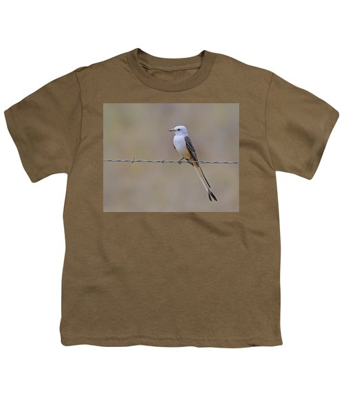 Scissor-tailed Flycatcher Youth T-Shirt by Tony Beck