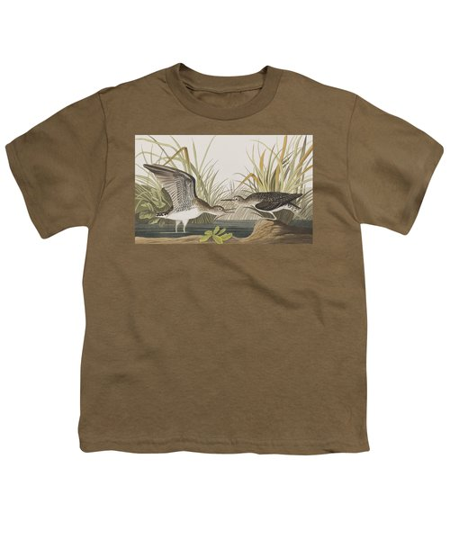 Solitary Sandpiper Youth T-Shirt by John James Audubon