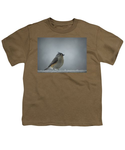 Tufted Titmouse In The Snow Youth T-Shirt by Cricket Hackmann