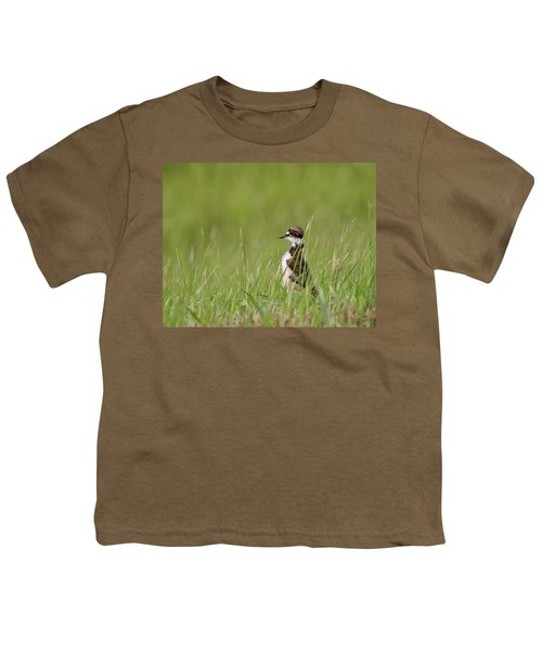 Young Killdeer In Grass Youth T-Shirt by Mark Duffy
