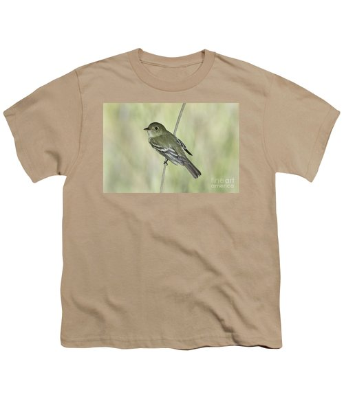 Acadian Flycatcher Youth T-Shirt by Anthony Mercieca