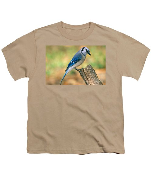 Blue Jay Youth T-Shirt by Millard H. Sharp