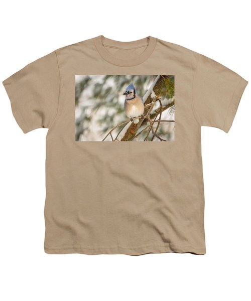 Blue Jay Youth T-Shirt by Everet Regal