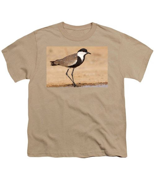 Spur-winged Lapwing Vanellus Spinosus Youth T-Shirt by Eyal Bartov