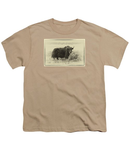 Yaks...the Official Animal Of Tibet Youth T-Shirt by Alan Toepfer