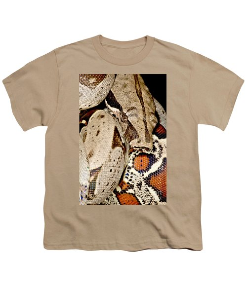 Boa Constrictor Youth T-Shirt by Dant� Fenolio