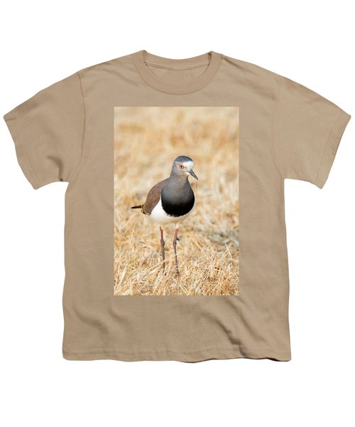 African Wattled Lapwing Vanellus Youth T-Shirt by Panoramic Images