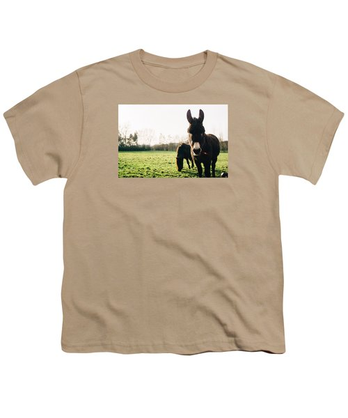 Donkey And Pony Youth T-Shirt by Pati Photography