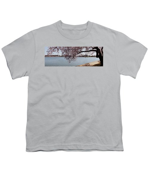 Cherry Blossom Trees With The Jefferson Youth T-Shirt by Panoramic Images