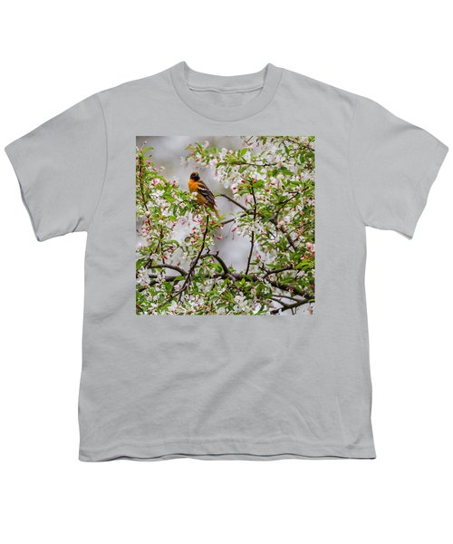 Oriole In Crabapple Tree Square Youth T-Shirt by Bill Wakeley